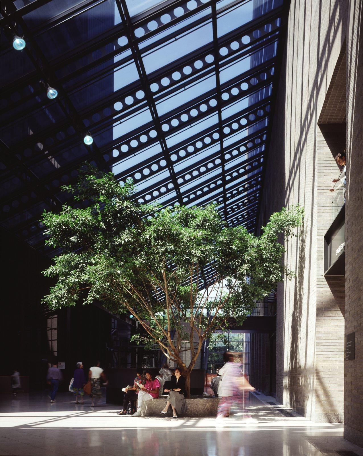 Guggenheim Pavilion, Mount Sinai Medical Center | Pei Cobb Freed
